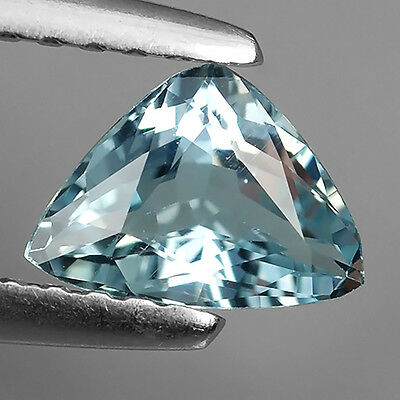 0.47 Ct ! Awesome ! Santa Maria Natural Aquamarine Trillion Cut Loose Gemstones