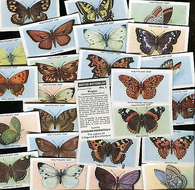 "Lifeguard Soap 1955 Full Set Of 25 ""british Butterflies"" Trade Cards"