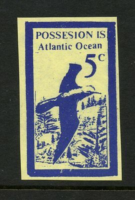 Possesion Island Atlantic Ocean - Local Bogus Fantasy - Bird