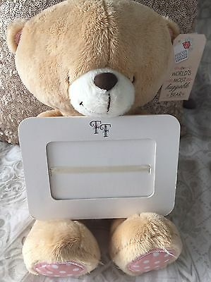 Forever Friends Teddy Bear With Picture Frame