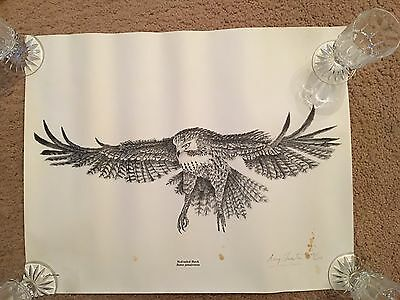 Red-Tailed Hawk Print By Gary Twesten Limited Editon # 249 Of # 250