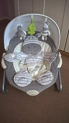 Bruin Gorgeous Baby Chair Rocker With Vibrate And Music