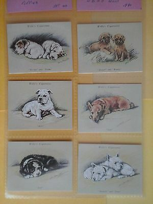 Wills Puppies Full Set in Mint condition In Sleeves ( Repro )