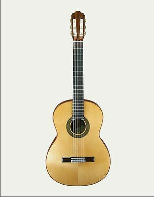 ARIA A-40S Solid Spruce Top  Classical Guitar