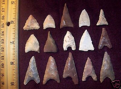 Choice Neolithic Arrowheads / Group of 15 (Triangles)               # l.9