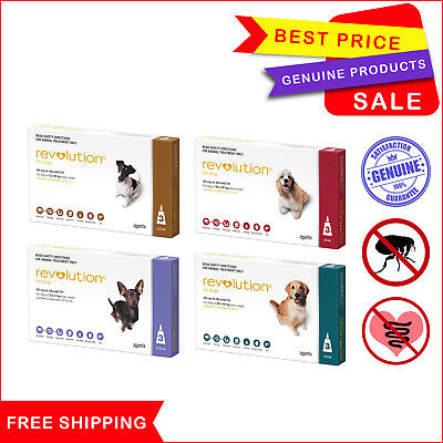 Revolution for Dogs Flea and Heartworm treatment All Sizes 3 Pipettes AU Stock