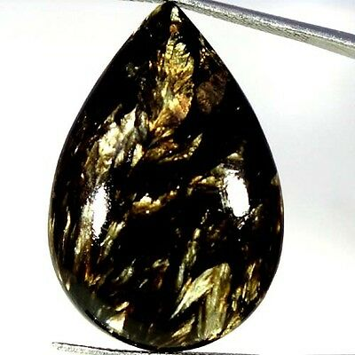 22.00Cts. Natural Designer Golden Seraphinite Pear Cabochon Fine Loose Gemstones