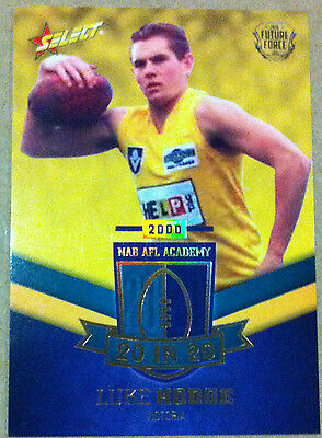 2016 Select Future Force NAB AFL Academy 20 in 20 Luke Hodge #145