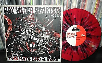 "GAY WITCH ABORTION with HAZE XXL - two rats and a p... 10"" Amrep  Melvins AMREP"