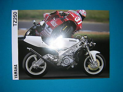 Yamaha TZ250 '94 Original Specification Sheet. New