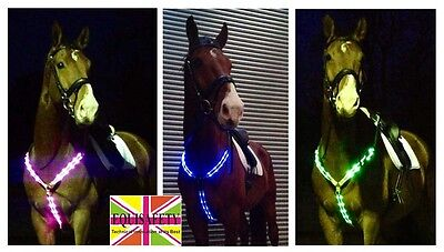 Equisafety FLASHING LED REFLECTIVE High Vis HORSE BREASTPLATE |  ADJUSTABLE FIT
