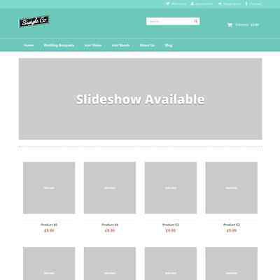 Shopping/eCommerce Website Template and hosting & Domain