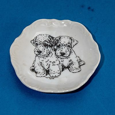 Pottery dish with picture of Sealyham Terrier puppies