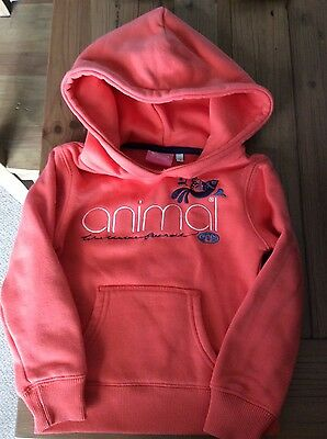 animal girls used hoodie 3-4 yrs orange