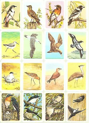 112 x Tuckfields Tea Australiana Bird Studies Cards