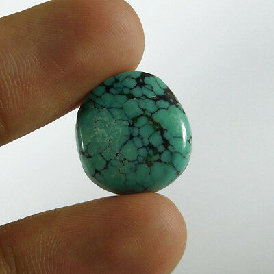 11Cts A+ 100% Natural Designer Tibten Turquoise 16X16 Cabochon