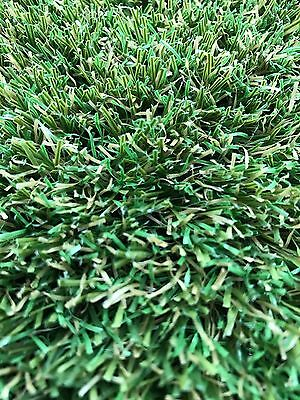 Synthetic Turf / Grass