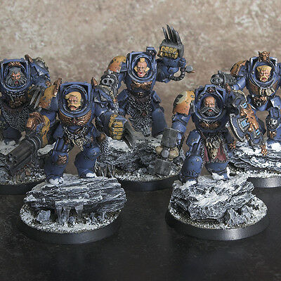 Warhammer 40k Space Wolves Wolf Guard Terminators Pro Painted