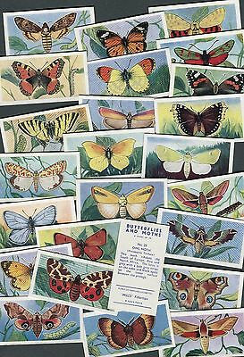 """Amalgamated Tobacco 1957 Set Of 25 """"butterflies And Moths"""" Cigarette Cards"""