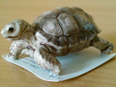 Beautiful Hagen Renaker Desert Tortoise On Card Model 3229 - San Dimas Ca Usa