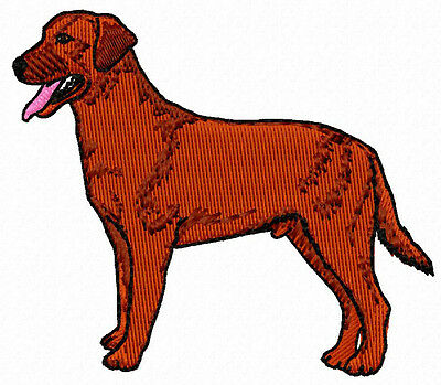 Chesapeake Bay Retriever embroidery Patch (a)