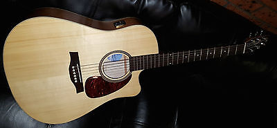 Seagull Entourage Natural Spruce CW QI Acoustic Electric Guitar *NEW* Inc Case!