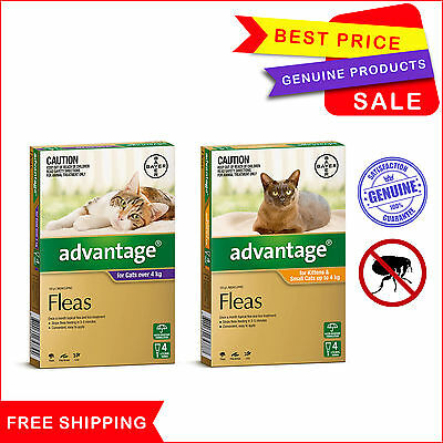 Advantage for Cats 4 Pipettes Flea Treatment for cats all sizes