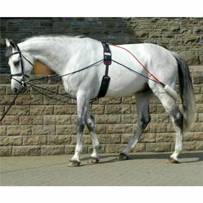 John Whitaker Training System Pessoa Training Aid New With Roller