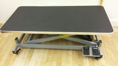 Large Electric Grooming Table Reserve is 400