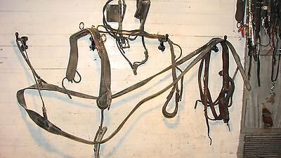 Horse Buggy Harness With Lines & Bridle