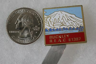 Fraternal Order Of Eagles Buckley Aerie #1387 REAC Mountains Pin Pinback #20109