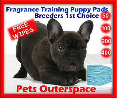 Fragrance Puppy Dog Pet Pee Training Pads 60 X 60 Adhesive Corners Indoor Toilet