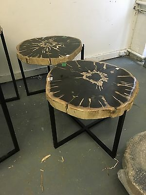 Petrified wood side table. Pair. Fossil side table.