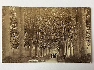 vintage postcard, Bewdley, Ribbesford Avenue, rp, early view