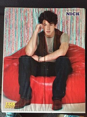 Set Of Two Jonas Brothers Posters