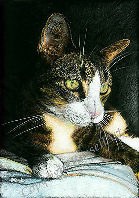 'Green Eyes' Tabby Cat cats signed A4 Art print of original Drawing RussellArt