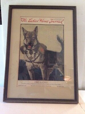 Service Dog Decorated World War 1 Red Cross Framed 1918 Ladies Home Journal
