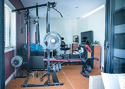 """Gym Station """"Lifespan Gym Plus"""" includes weight plates over 120kg bench press"""