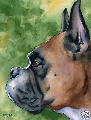 BOXER Dog Watercolor Painting 8 x 10 ART Print Signed by Artist DJR