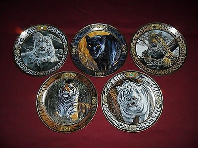 """Collectable Plates By Anthony Gibbs - """"big Cats"""" - Limited Edition Set Of Five"""