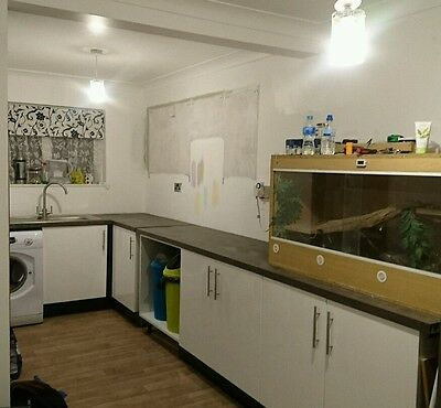 White gloss kitchen cabinets and worktops mountain timber colour inc. Sink