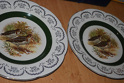 pair of Ascot Service plates woods & sons