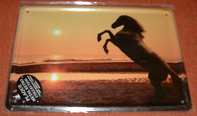 * METAL SIGN * HORSE STANDING UP * Beach at dusk