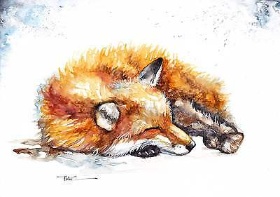 A4 PRINT of an Original Watercolour Painting by Be Coventry,Realism,Resting Fox