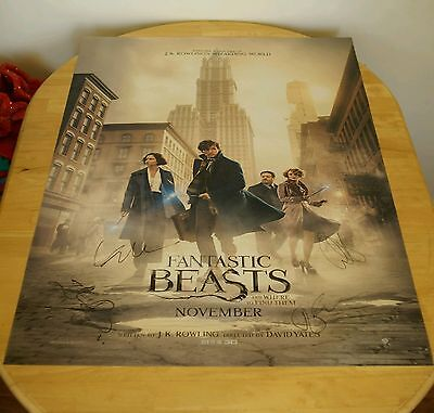 """100% genuine Fantastic Beasts 27"""" x 40"""" movie poster signed by cast REDMAYNE etc"""