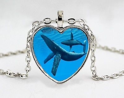 Humpback Whales Silver Heart Shaped Photo Pendant Necklace