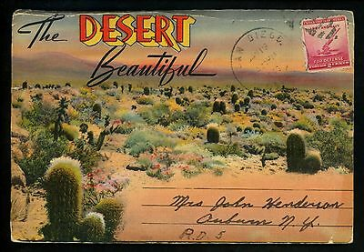 Postcard Folder USA American Desert Cactus Flowers Lizards Gila Monsters Linen