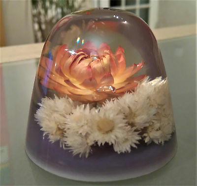 VINTAGE PERSPEX LUCITE PAPERWEIGHT DAISY DRY /GARDEN FLOWER By Janet Row
