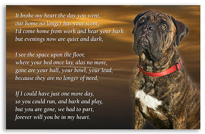Bullmastiff Dog Fridge Magnet  Pet loss Bereavement Memorial Gift
