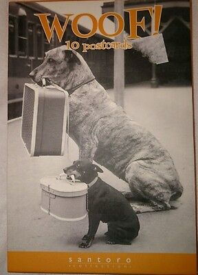 10 dog post-cards perfect stocking filler